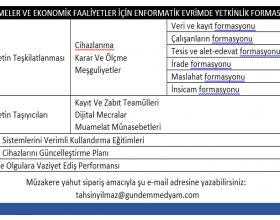 İşletmelerin Ve Sektörlerin Enformatik Evrimde Yetkinlikleri Hakkında